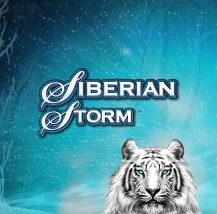 Logo image of the siberian storm tile game