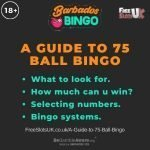"A guide to 75 ball bingo featured image showing the Barbados Bingo logo and the text: ""What to look for? How much can you win? Selecting numbers. Bingo systems."""