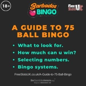 """A guide to 75 ball bingo featured image showing the Barbados Bingo logo and the text: """"What to look for? How much can you win? Selecting numbers. Bingo systems."""""""